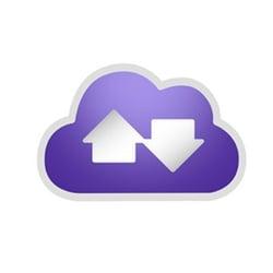 Platform Purple Logo